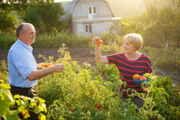 Top Things To Do Post-Retirement, So Don't Let It Get You Down!