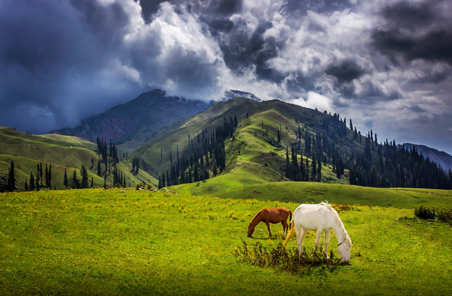 Top 5 Dazzling Places To Visit Naran Kaghan In 2018